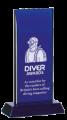 DIVER Award 2015