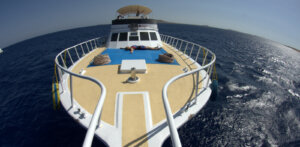 winter offer - Red Se diving holiday